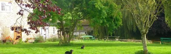 Our new garden....